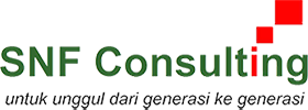 website SNF Consulting